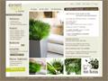 Elément végétal - plantes stabilisées 100% naturelles