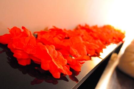 Des fleurs rouges très jolies
