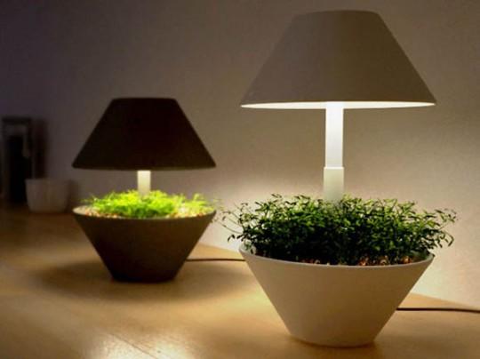 Lightpot - pot de fleurs et lampe de table