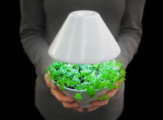 Lightpot, pot de fleurs lampe à poser