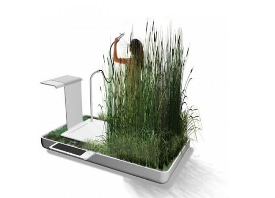 Douche avec des plantes naturelles