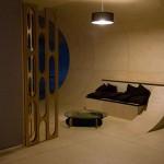 Etnies house - salon skatable