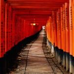 Photo d'un couloir en bois asiatique