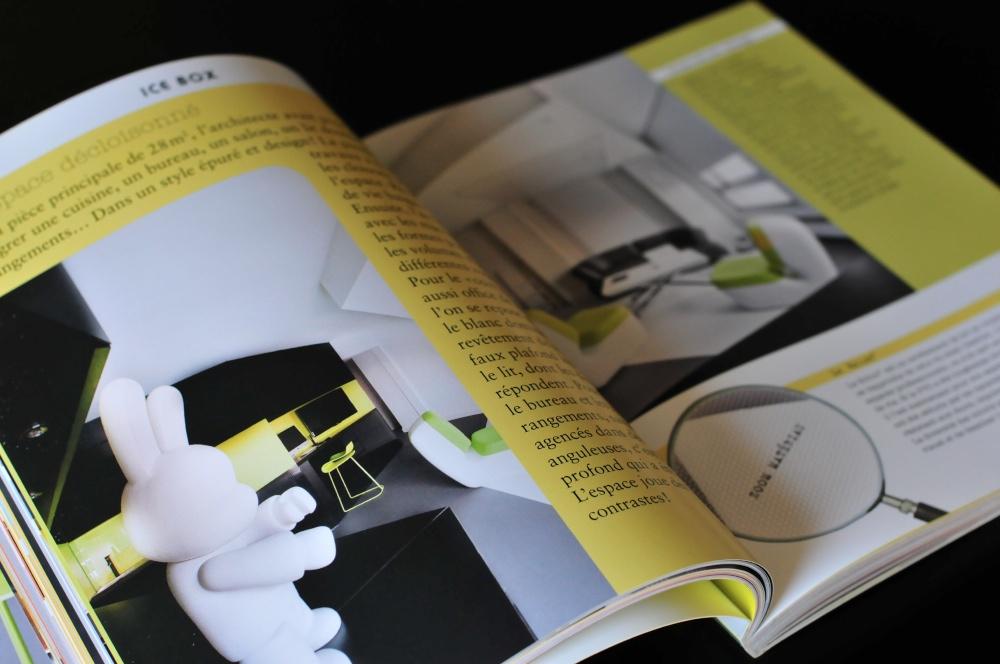 Livre déco de petit appartement / présentation du Studio Icebox