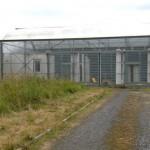Serre industrielle à Lille