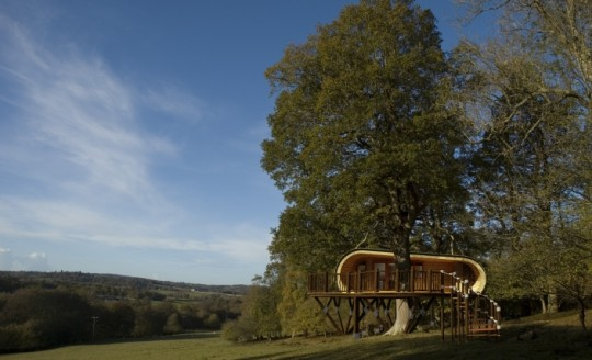 Maison en bois dans un arbre ecoPERCH par Blue Forest