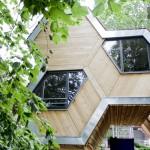 Location de cabane dans les arbres sur Airbnb