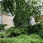 Louer une cabane dans les arbres sur Airbnb
