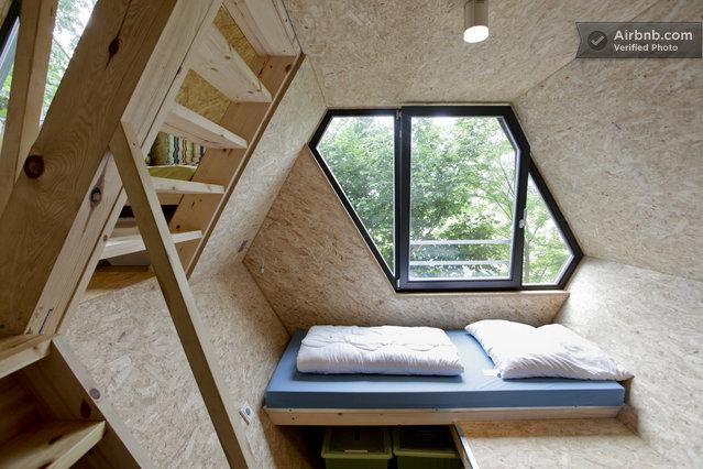 int rieur contemporain pur dans une cabane dans les arbres. Black Bedroom Furniture Sets. Home Design Ideas