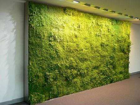 Green wall, mur végétalisé. Indoor landscaping