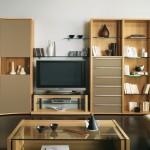 Inspiration meuble TV salon contemporain Gautier Neos