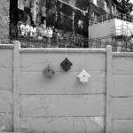 Nichoir design PIcto en noir et blanc