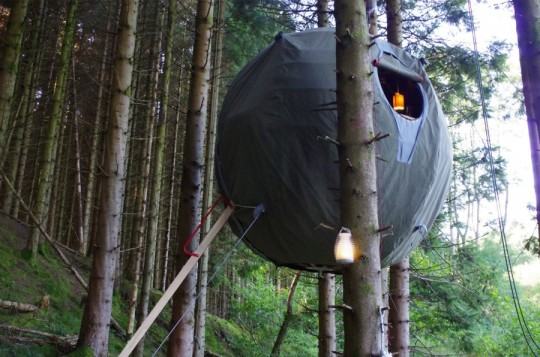 Tree Tent by Luminair : Tente sphérique dans un arbre