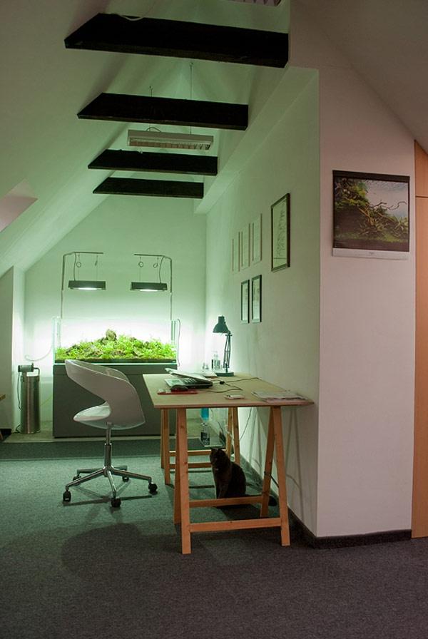 appartement contemporain sous les combles bureau avec un aquarium. Black Bedroom Furniture Sets. Home Design Ideas