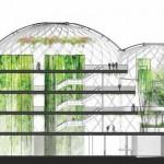 Plan de coupe des 3 sphères du nouveau siège d'Amazon à Seattle