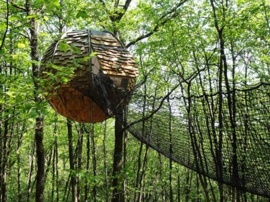 Cabane sphérique dans un arbre