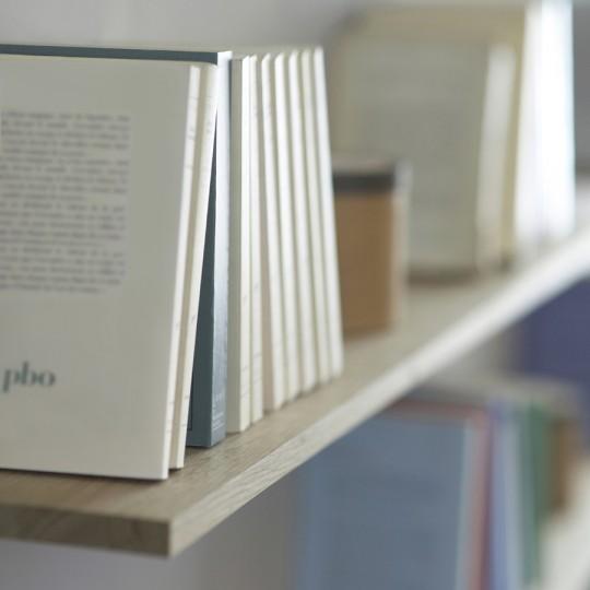 Etagère sous-titre - bibliothèque sans montants