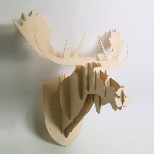 Trophée de chasse Moose - Big Game
