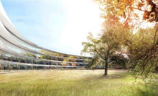 Apple Campus Cupertino - végétation au centre de l'anneau