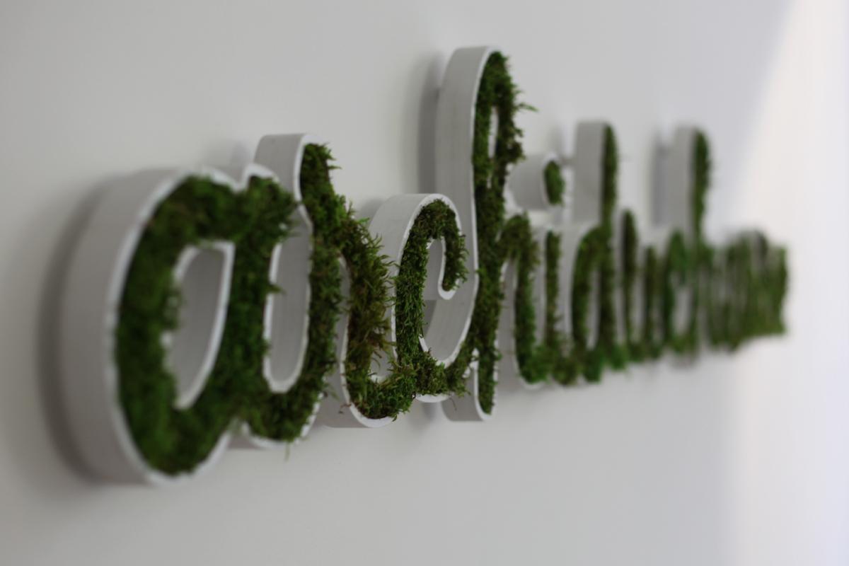 Logo végétal : Un logo verdoyant à accrocher au mur de votre Entreprise