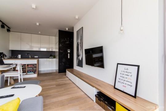 Appartement avec une décoration scandinave