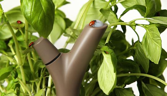 Parrot Flower Power - capteur sans fil pour plantes vertes