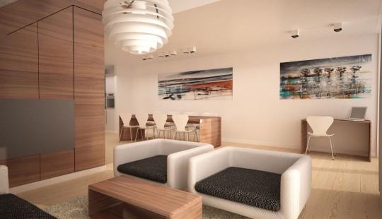 Starter House projet maison contemporaine 3D Simonas Petrauskas