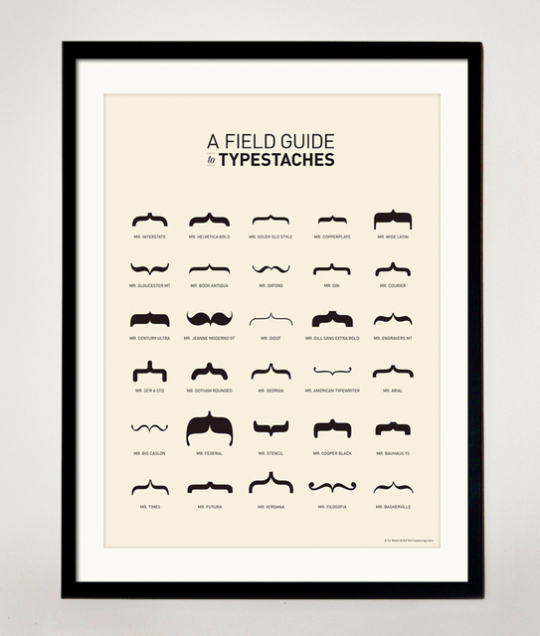 Tableau a Field Guide to Typestaches