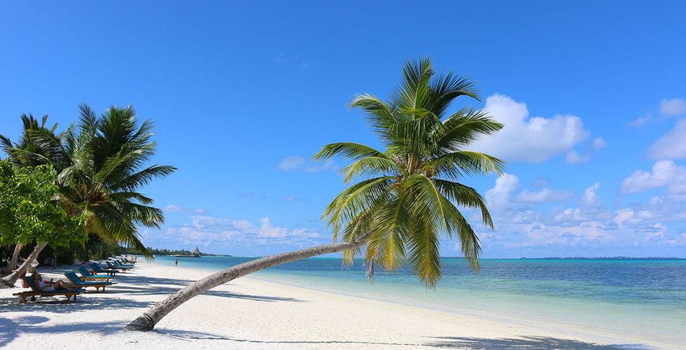 Maldives meedhoo canareef resort maldives 4 plage - Image de plage paradisiaque ...