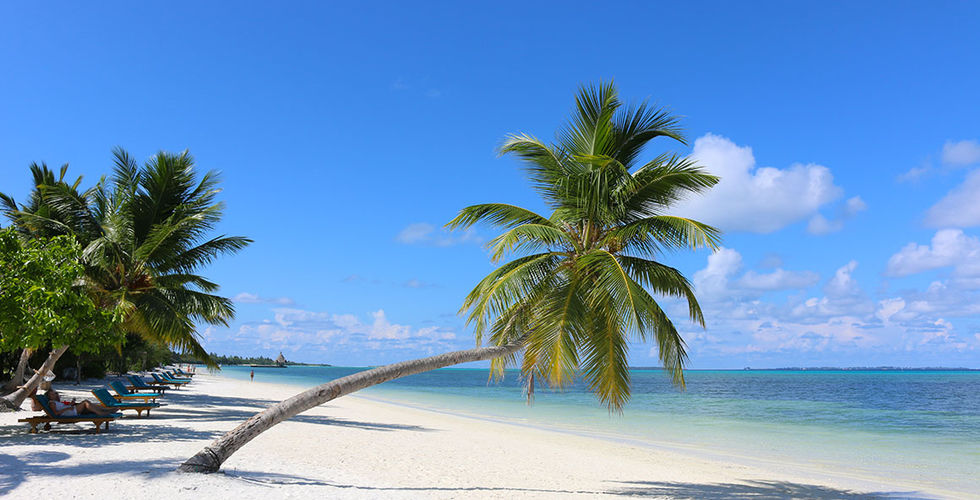 leblogdeco.fr/wp-content/2015/12/Maldives-Meedhoo-Canareef-Resort-Maldives-4-Plage-paradisiaque.jpg