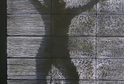 Litracon : Le béton transparent est arrivé !