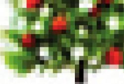 Poster Sapin de Noël Christmas Tree : Sauvez un sapin à Noël !