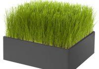 Pré vert Racine carré