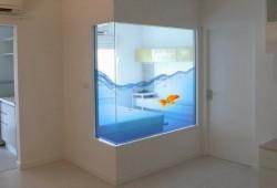 Comme un poisson dans l'eau… #AquariumGéant