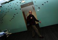 Bureaux Twitter – mur vert avec des oiseaux