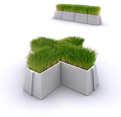 pots avec de l'herbe modulables