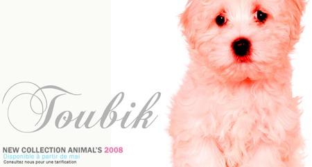 tableau design avec une photo de chien