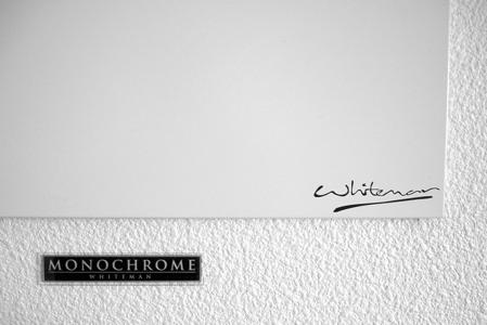 tableau  monochrome whiteman