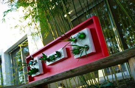 tableau végétalisé avec des plantes - Flowerbox